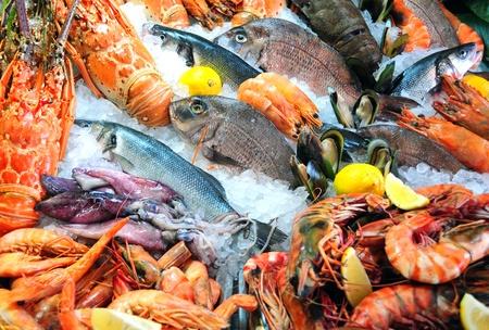 pescados y mariscos: Pescados y mariscos frescos fotografiado en la lonja