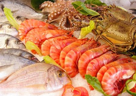 gamba: Pescados y mariscos frescos fotografiado en una lonja de pescado