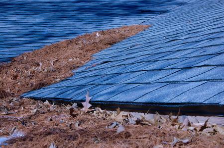 Leaves On A Roof Zdjęcie Seryjne