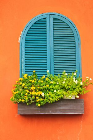 Stock Photo - Window and flower