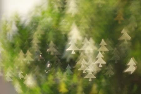 bokeh Christmas trees background abstract macro photo