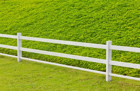 Stock Photo - wooden fence in the grass. photo