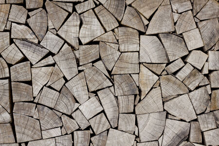 Stock Photo - wood stump texture photo
