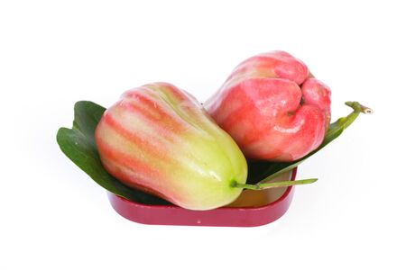 tantalizing: Rose apples or chomphu isolated on white background