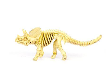 Dinosaur skeleton.  over white isolated background photo