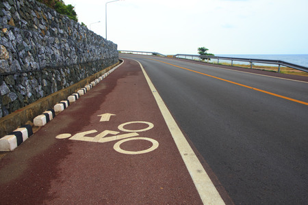 one lane: Bicycle lane. White mark of bicycle and white arrow pointing one way