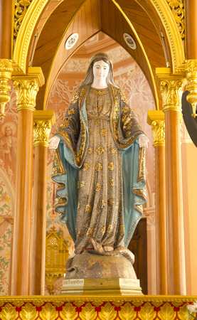 human fertility: The Cathedral of the Immaculate Conception Church, Chanthaburi