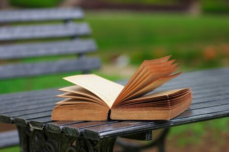 prose: Books on  table on natural background Stock Photo