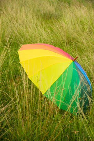rainbow umbrella: rainbow umbrella on the field