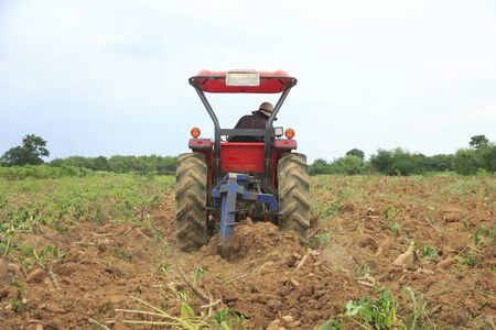 drove: Farmer was drove tractor plowing the soil to harvest cassava