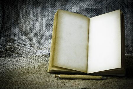 book pages: Old opened book with empty pages Stock Photo