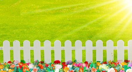 picket green: Stock Photo - wooden fence in the grass.