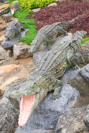 alligator eyes: Statue crocodile in front of crocodile ponds