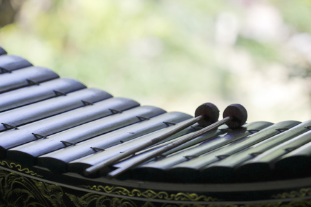 The close up xylophone and two mallets on green background Stock Photo