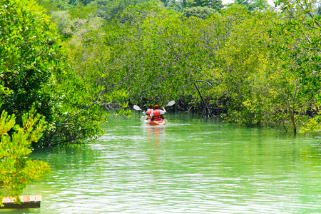 Kayaking in the mangrove jungle near Koh Payam Resort., Thailand 版權商用圖片 - 101476978