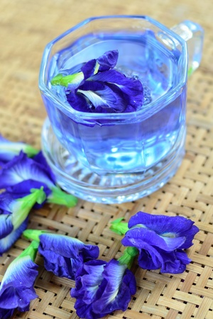 Herbal drinking with pea flowers Stock Photo - 13562828