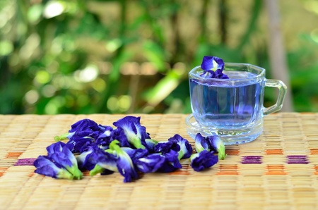 Herbal drinking with pea flowers Stock Photo - 13562820