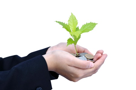 Tree growing on Baht coins with business women hands Stock Photo