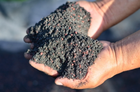 chemical fertilizer: Mixed of chemical fertilizer and humus Stock Photo