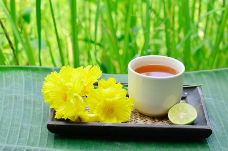 Aroma lemon tea with blossoms and green background  photo