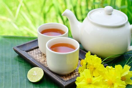 Tea whit yellow flower and green background photo