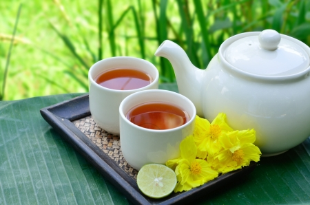 green tea leaf: Tea whit yellow flower and green background Stock Photo