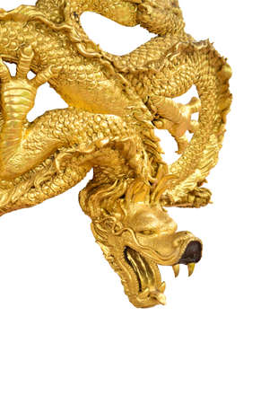 isolated of golden dragon photo