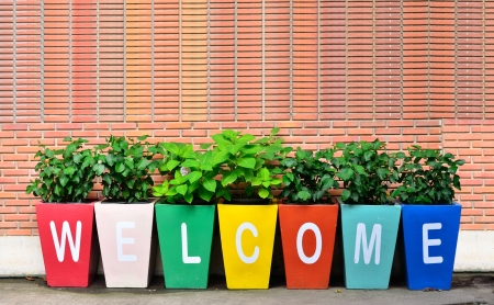Colorful of the Welcome