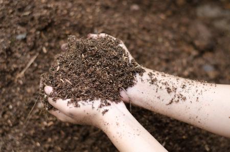 soil: Minerale del suolo tra le braccia di agricoltori