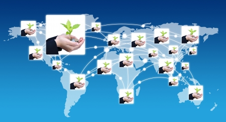 grow money: Tree growing on money with social network