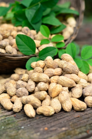 groundnuts on wood table