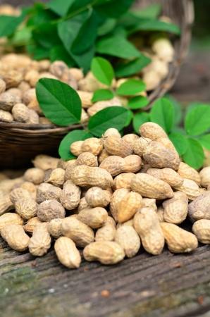 cacahuate: cacahuetes en la mesa de madera