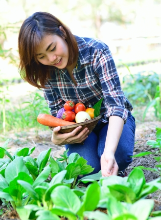 Beautiful asian women harvesting organic vegetables Stock Photo