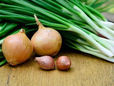 Fresh green shallot and onion on wood background