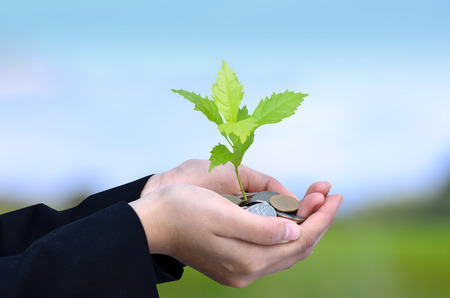 Money, Tree,Coins, Business growing concept, Success, Hand holding young tree growing on coins stack and Blue Sky Stockfoto