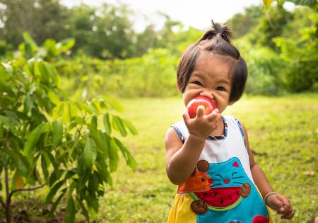 comiendo frutas: Asiático bebé niña que come la manzana sobre fondo verde en el tiempo de la mañana con la luz del sol Foto de archivo