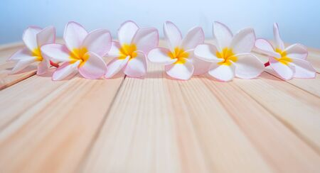 Spa flowers with wood background for art design