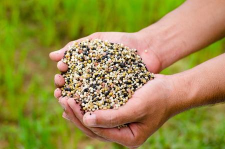 Farmer hand holding plant chemical fertilizer over green background
