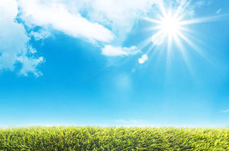 Background for template design by nature green grass meadow with cloud blue sky and sun