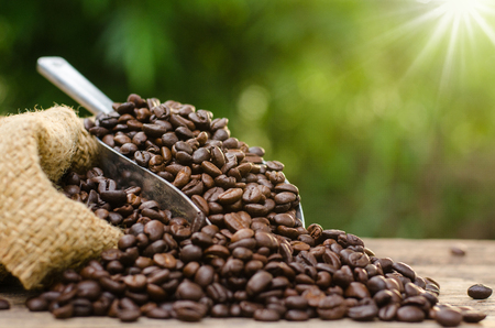 coffee bean bag and coffee roasted over nature green background and sunlight in morning time