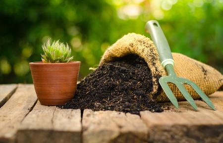 cactus on plant pot with fertilizer bag  over green background, Summer garden concept Stockfoto