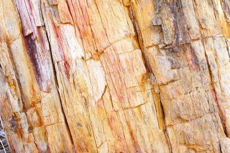 bedrock: A rock involved  Stock Photo