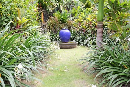 alfresco: small garden and jar, Thailand.  Stock Photo