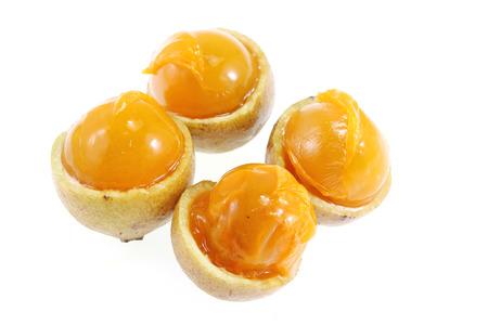 laxative: Schleichera oleosa (Lour.) Oken ,fruit of Thailand