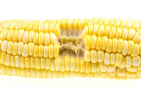 corncob: Isolated cooked bitten corncob Stock Photo