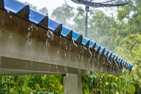 trickle down: Rain on the roof