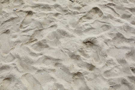 aridness: Lines in the sand of a beach