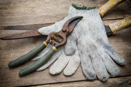 replant: Gardening tools on old wooden background.vintage style