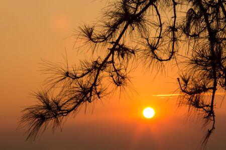loei: beautiful sunlight  at phu ruea in loei province thailand