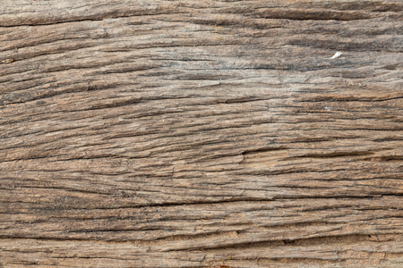 wainscot: Old Wooden texture